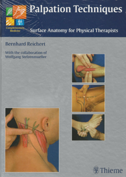 Palpation Techniques - Surface Anatomy for Physical Therapists