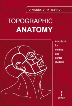Topographic Anatomy