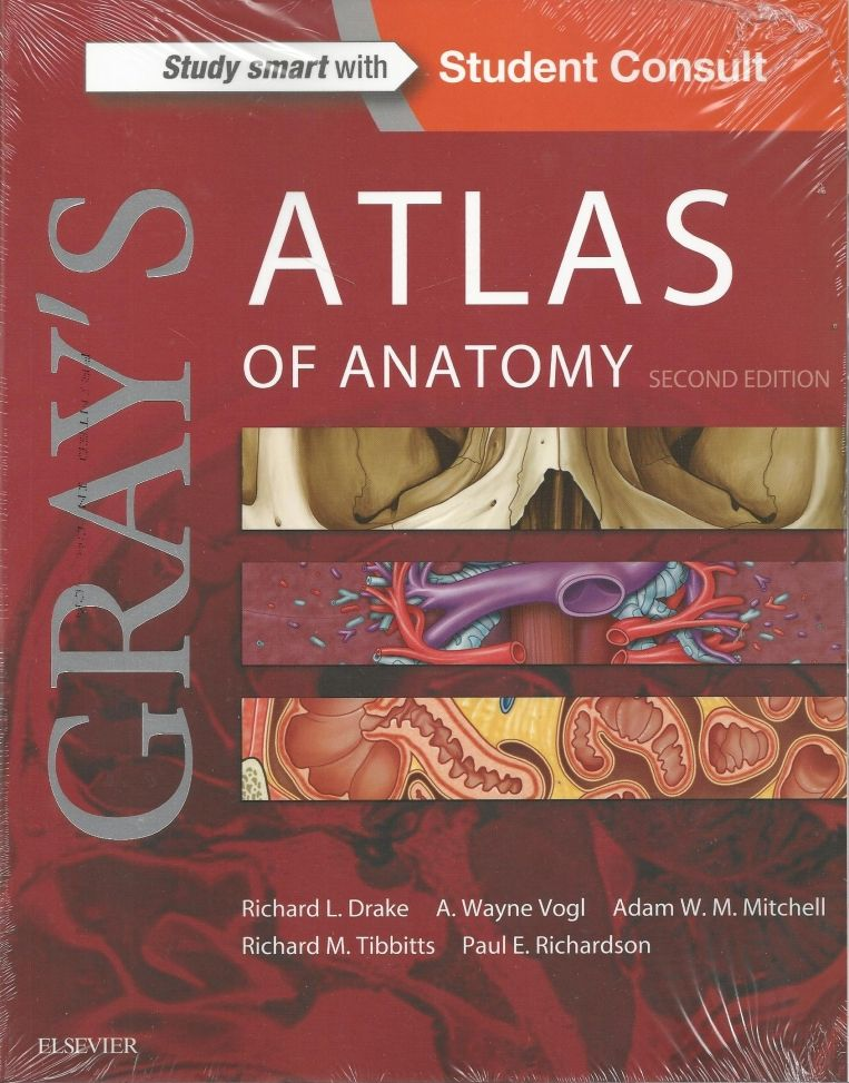 Grays Atlas Of Anatomy 2nd Edition