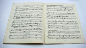 MOZART Concerto In La K. 488 PER 2 PIANOFORTI (Montani)