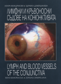 Lymph and Blood Vessels of the Conjunctiva (Clinical Aspect)